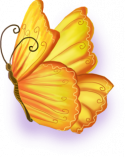 butterfly_right.png